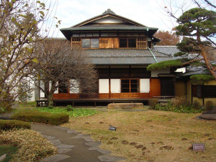 autumn in Tokyo2 dec2013 500pt