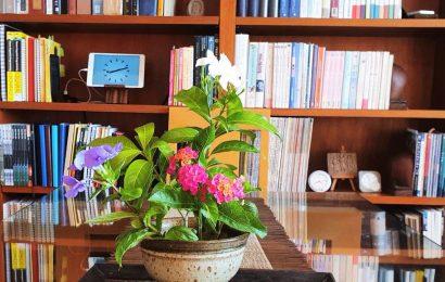 Ikebana 4 aug82021